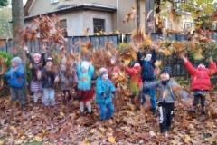 jesien w ogrodzie (2)