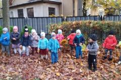 jesien w ogrodzie (3)
