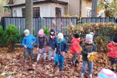 jesien w ogrodzie (5)