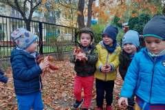 jesien-w-ogrodzie-1