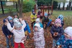 jesien-w-ogrodzie-3